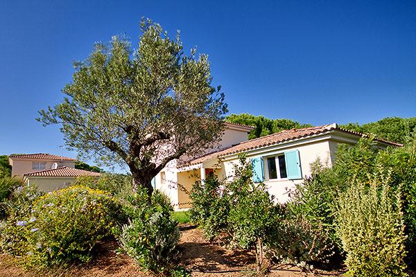 Location de villa a calvi a campagna descriptif - Location villa calvi avec piscine ...